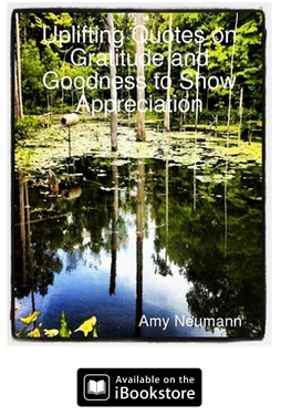 Uplifting Quotes on Gratitude and Goodness to Show Appreciation - social good quotes book  by Amy Neumann