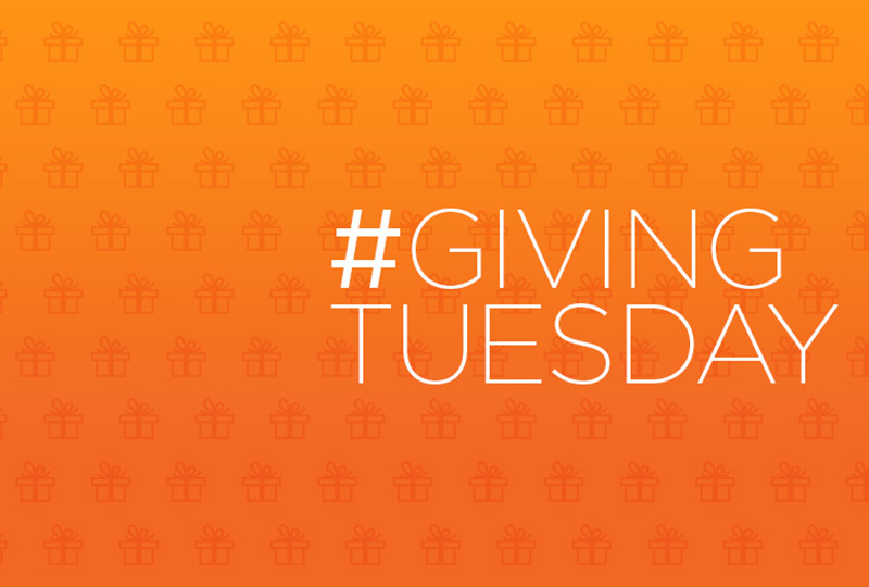 Giving Tuesday | Charity Ideas